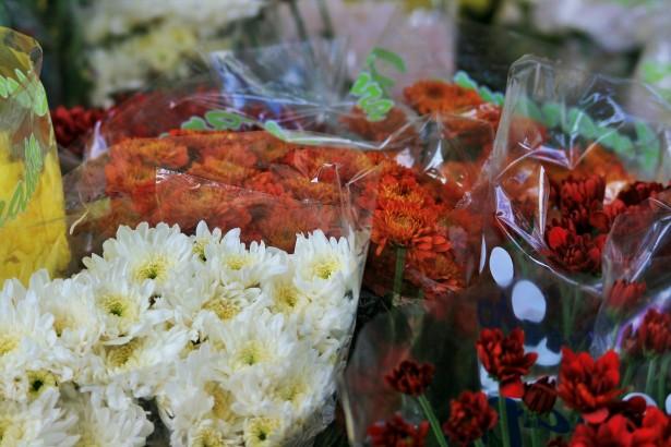 Virágkötő és virágkereskedő OKJ Képzések